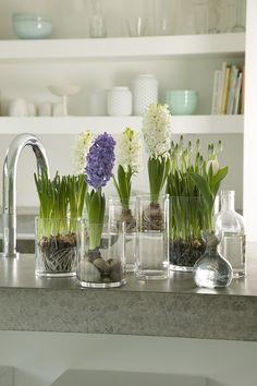8 идей цветочных композиций для украшения интерьера