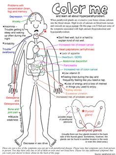 Cartoon of Parathyroid Disease Symptoms and Hyperparathyroidism. Nursing School Tips, Nursing Tips, Nursing Notes, Parathyroid Symptoms, Thyroid Disease Symptoms, Hypothyroidism, Medical Surgical Nursing, Endocrine System, Medical Information