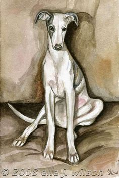 Indie  Whippet Puppy  Art Dog Print by AlmostAnAngel66 on Etsy, £15.00