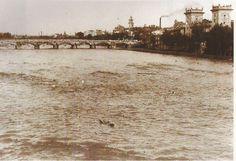 PANORAMA URBANO: El cauce del rio Turia totalmente lleno de agua, visto desde el puente del Real. Al fondo, el puente de Serranos y el museo San Pío V.