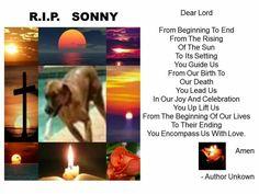 For Sonny, a victim
