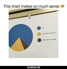 I Like Pie Charts #lol