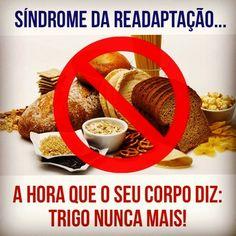 Dieta Low Carb: Síndrome da readaptação na Dieta Low Carb - Trigo ...