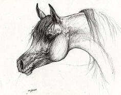 La plume de portrait de cheval arabe dessin par AngelHorses sur Etsy