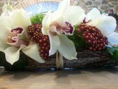 Corteccia orchidee e achillea