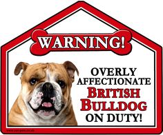 """Bulldog, These fun Warning Suction signs can be placed on Car, Caravan or House window and also on fridges and mirrors.  They are approximately 7"""" x 6"""" in size and make a great gift idea for family, friends and Dog lovers. Why not buy yourself one too!"""