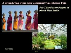 Community Greenhouse is a economically value added demonstrated technology existing today that can strengthen impoverished ethnic voices of the...