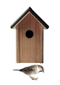 Muursticker vogelhuisje