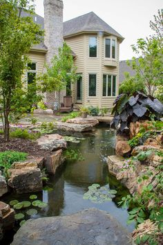 Suburban backyard is transformed into amazing oasis with pond, stream, and waterfalls.