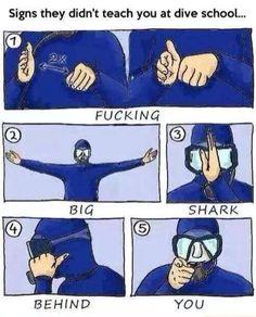 When scuba diving .. Lol! #scuba #shark #signal #jokes