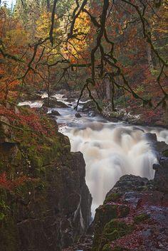 Black Linn Falls by Ian Cocks ~ Perthshire Scotland**