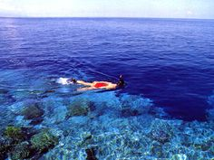 Maluku, Indonesia  need to learn diving..