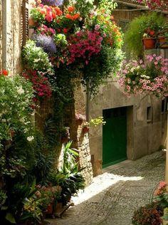 Cobblestone Street, Spello, Italy
