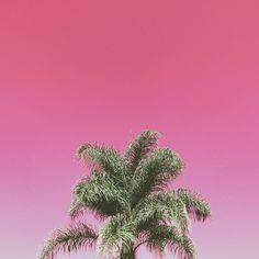 pink vsco   Tumblr