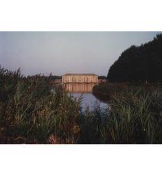 Stellata, Bonifica Parmigiana Moglia, 1989