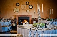 Olive Mystery in Bapsfontein, 20 min from Pretoria and ORT airport. Shot by Alexander Smith Photography