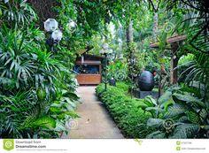Photo about Path in green tropical garden. Image of rain, environment, beautiful - 27527799 Tropical Garden Design, Tropical Backyard, Tropical Landscaping, Landscaping With Rocks, Tropical Plants, Front Yard Landscaping, Tropical Gardens, Landscaping Ideas, Backyard Ideas