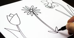 How to Draw Three Different Spring Flowers - tutorial with step-by-step printables
