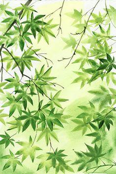 Leafy Bliss