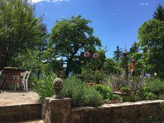 Lau Garten
