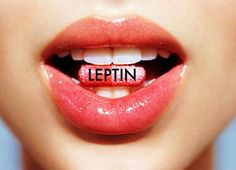 how to raise leptin levels in your body