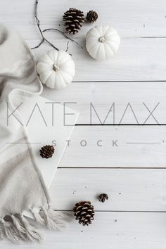 """Gorgeous, fresh Fall images: ghost pumpkins, pinecones, and whitewashed wood!  """"PRETTINESS for my Instagram feed!!"""" > > TONS of gorgeous images for YOU to use!! > > KateMaxStock.com  Styled Stock Photography / KateMaxStock / Flat Lay / Product Mockup / Pretty Office / Desk From Above / Gorgeous Branding / Branding Colors / Office Styling / Pretty Office / Social Media Background / Instagram Image / Blog Photo / Photos for your Blog    katemaxstock-2157"""