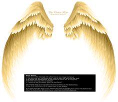 Arch Angel Wings - Golden by Thy-Darkest-Hour.deviantart.com on @DeviantArt