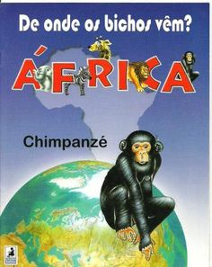 Africa - Chimpanzé - Erika Vecci - Álbuns Web Picasa