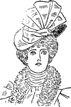 HAT IN SILK (Auckland Star, 20 May 1899)