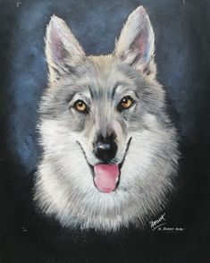 An unusual pet portrait of a beautiful female wolf. Soft pastels on textured black board.
