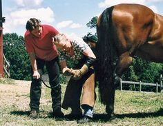 From coast-to-coast, natural-horse promoters are advising horse owners to pull their horses' shoes so that the animals may enjoy the comfort of the barefoot life. You're tempted to do the