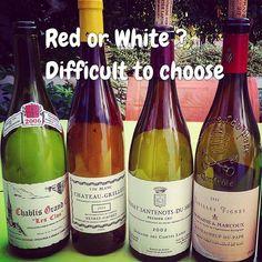 Difficile de choisir ! Dauvissat Grillet Lafon Marcoux  #burgundy #bourgogne #vin #dégustation #winelover #Vineyard #winetasting #tasting #wine #vigne #vines #organic #vignoble #Wine #naturalwine #organicwine #vin #vinnaturel #instawine #viticulture #wineporn #winegeek  #nature #winelover #vintagewine  #instavinho  #instadrink #instamood #wine