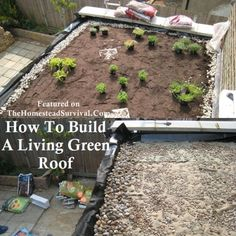 How To Build A Living Green Roof Project » The Homestead Survival