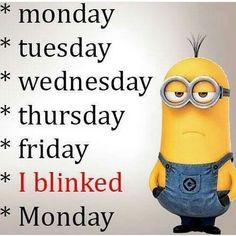 Top 68 Funny Minions (08:31:15 AM, Thursday 17, November 2016 PST) – 68 pics