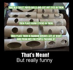 You know.... I just kind of like this idea! (Perhaps  I will grow up tomorrow.... - or not)  To cut out eyes in toilet paper rolls, put glow sticks in them, and freak people out.