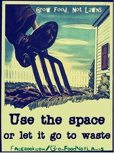 Grow food, not lawns. #poster #urbangarden #ediblegarden