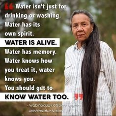 The Muskrat Falls Civil Rights Movement Native American Spirituality, Native American Proverb, Native American Wisdom, Native American Women, Native American History, American Indians, Quotes Wolf, Wisdom Quotes, Spiritual Quotes