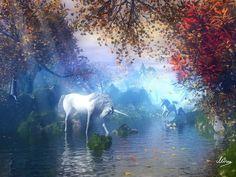Unicorn reflecting pool