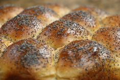 Eric's Easy Bake – Episode 4 | Soft Pull-Apart Dinner Rolls. Easy to make and so very good.