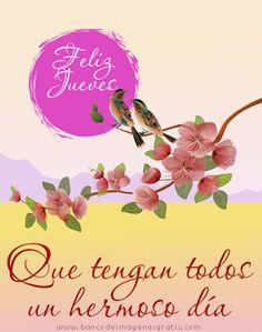 """Postales con flores y mensajes de """"feliz jueves"""" para compartir   Banco de Imágenes Gratis"""