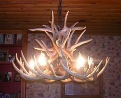 New 26 inch by 20 inch tall Whitetail Deer Antler Chandelier with center down light. on Etsy, $699.95
