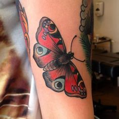 traditional butterfly tattoo tumblr - Google Search