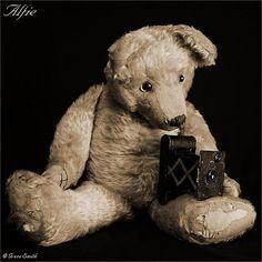 Alfie The Teddy Bear
