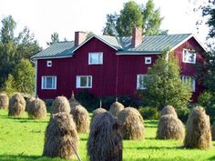 Typical Finnish House as seen in Vaasa Finland - Photo Credit: Cheryl . Finnish Language, Native Country, Scandinavian Home, Cheryl, Photo Credit, Cities, Watercolor, Heart, Places