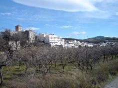 Cádiar (Alpujarra Granada) *** photo by Robert Bovington - http://bobbovington.blogspot.com.es/2012/02/beauty-of-alpujarras.html