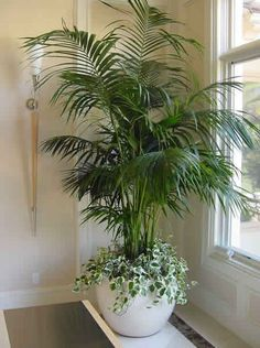 4 Simple and Modern Tricks Can Change Your Life: Artificial Flowers Table large artificial plants topiaries.How To Arrange Artificial Flowers artificial plants houseplant.