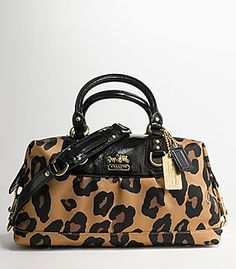 Coach + Leopard= greatest christmas present!