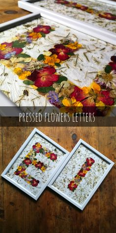 Personalized framed letters of pressed flowers art Gift Flowers, Real Flowers, Flower Letters, Flower Frame, Paper Gift Bags, Paper Gifts, Four Seasons Art, Framed Letters, Garden Deco
