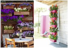 Plant wall and flower boxes decorate the outdoor terrace  Love these for burst of color or an kitchen herb garden