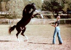 Cass Ole (The Black Stallion) and Margo Shallcross